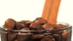 Top of little bottle with brown coffee beans and stock video