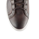 Top of male shoe Royalty Free Stock Images