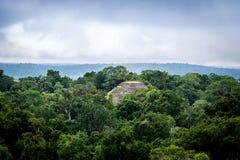 Top of mayan pyramid at Tikal National Park - Guatemala Stock Image