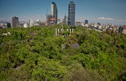 Top of modern architecture, parks and building in the centre of Mexico city Royalty Free Stock Photo