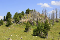 Top Mount Tiyahty of Altai Mountains Royalty Free Stock Photos