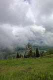 The top the mountain with green meadows in the rain clouds. Royalty Free Stock Images