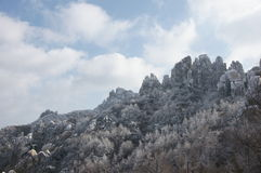 The top of the mountain rime. Qingdao`s laoshan of China Stock Images