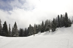 Top of the mountain with snow. Top of the mountain cover with snow, with some threes and clouds in the sky Stock Photos