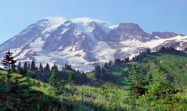 Top of mountain   view in Mt Rainier National Park Stock Images