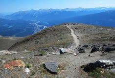 Top of mountain Whistler royalty free stock photo