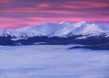 The top of the mountains among a sea of fog Stock Image