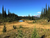 On top of Mt.Revelstoke Stock Images