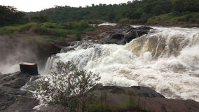 Top of Murchison falls in super slow motion. Wide angle view of top of Murchison falls in super slow motion stock video footage