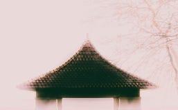 Top Nevado imagen de archivo