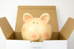 Top of opened carton box with piggy bank inside Stock Photography