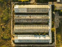 Top overhead view of organic greenhouse farm texture background f stock photography