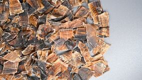 Herb DuZhong or Eucommiae Cortex or Eucommia Bark