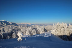 Top part of ski slope Royalty Free Stock Images