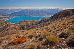 The top plateau of Breast Hill in New Zealand. Blue Hawea lake in valley near town of Wanaka royalty free stock image