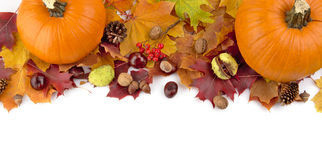 At the top pumpkins with autumn leaves for thanksgiving day stock image