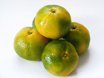 Top quality fresh mandarin pictures for your custom design and advertising Royalty Free Stock Photos