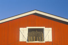 The top of a red barn in central FL Stock Image