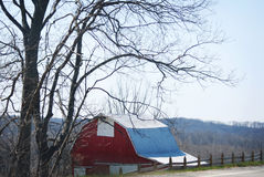 Red barn in rural Indiana with fence and tree. Stock Photo