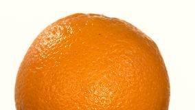 Top of ripe orange isolated on white, rotation stock video