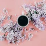 Top rosado del fondo de la endecha de la taza del café de las ramas de las flores planas de la lila v Foto de archivo