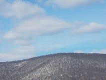 Top sacado el polvo nieve de la montaña imagen de archivo libre de regalías