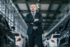 Top sales manager at dealership showroom.  Stock Photo
