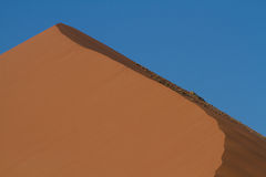 The top of the sand dune, Sossusvlei Stock Image
