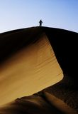 On top of a sanddune. In the Taklamakan Desert, eastern China Stock Photography