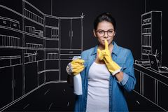 Pleasant housewife clening her house stock image