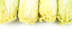 Top side Chinese cabbage. On white background Stock Photo