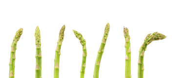 The top of some asparagus. On a white background Royalty Free Stock Photo
