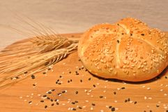 Top table with a fresh backed bun with  wheat stock image
