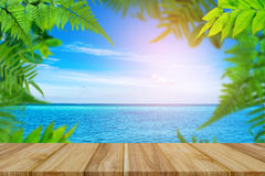 Top table wood Green trees and leaf greenery on the beach Royalty Free Stock Photo