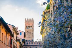 Top of tower of Palazzo Re Enzo palace building and blossom lilac among buildings on the street in old historical city center of B royalty free stock photo