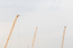 Top of trio cranes. A long tele shot of working cranes Royalty Free Stock Photos