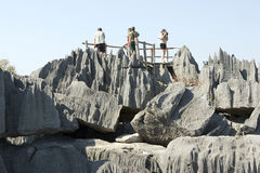 On the top of the Tsingy de Bemaraha Royalty Free Stock Image