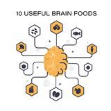 Useful products for the mind. Top useful products for the brain. Useful information for health. Infographics royalty free illustration