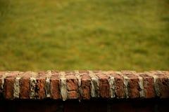 Top vacío del campo de la pared de ladrillo y de hierba en fondo (para la exhibición del producto) Imágenes de archivo libres de regalías
