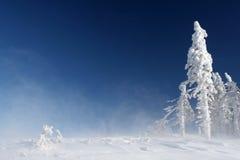 Top van berg Stock Afbeelding
