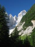 Top van nationaal park Jalovec - Triglav. Stock Afbeelding