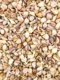 Top veiw photo of fresh garlic group background Stock Photography