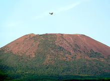 Top of the Vesuvius Royalty Free Stock Images