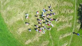 Top view aerial video of happy little childrens running on the meadow stock video