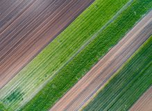 Top view of agricultural parcels. Abstract geometric shapes of agricultural parcels of different crops in green colors. Aerial view shoot from drone directly royalty free stock photography