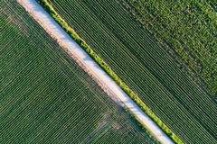Top view of agricultural parcels. Abstract geometric shapes of agricultural parcels of different crops in green colors. Aerial view shoot from drone directly Stock Photo