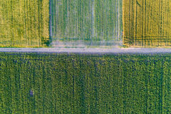 Top view of agricultural parcels Royalty Free Stock Image