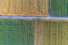 Top view of agricultural parcels Stock Images