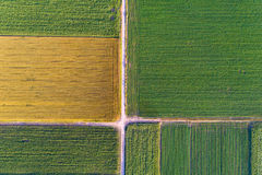 Top view of agricultural parcels Royalty Free Stock Photography