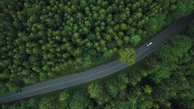 Top view on amazing road with cars in forest in Germany. Germany forest road top view. Car crossing the road in Germany. Beautiful road in forest in Germany stock video